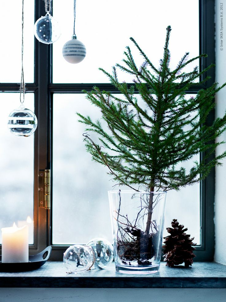 decorazione con ramo di pino 2