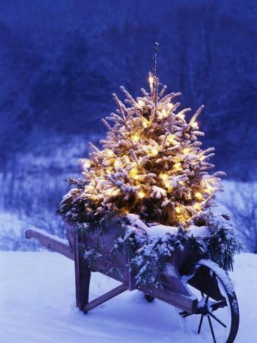 decorazioni-natalizi-esterne-7