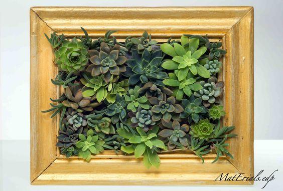 Un quadro di piante grasse 20 idee stupende video tutorial for Cornici quadri fai da te