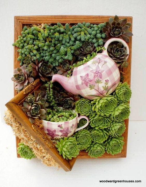 cornici-con-piante-grasse-fai-da-te-15