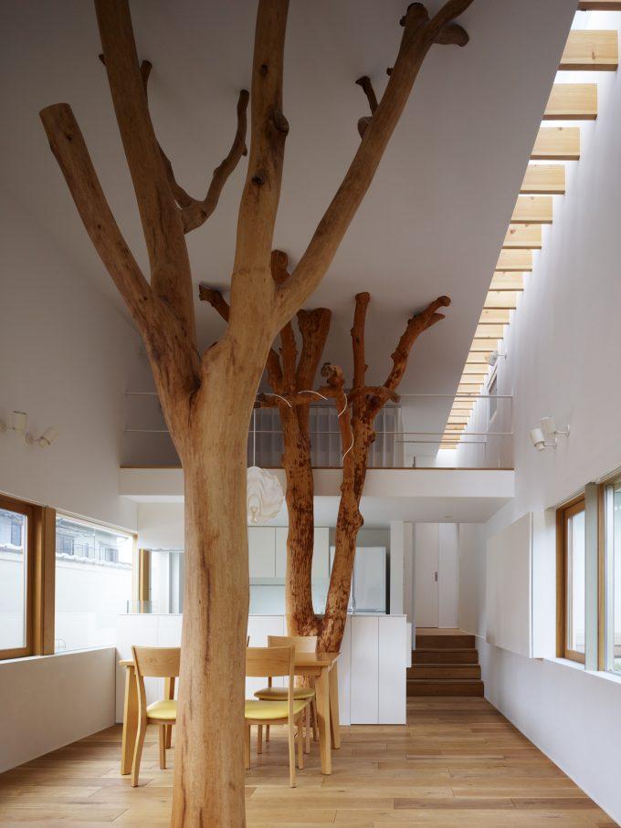 decorazioni con alberi e tronchi ecco 20 esempi