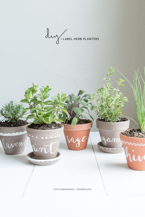 Decorare creativamente un vaso in terracotta 20 idee for Indoor gardening gadgets