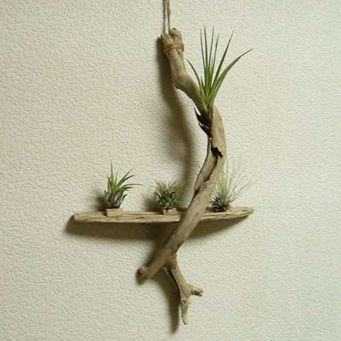 decorazioni fai da te con legno di mare 18