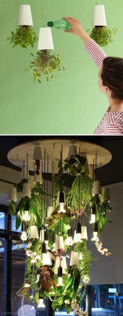 decorazioni originale piante 12