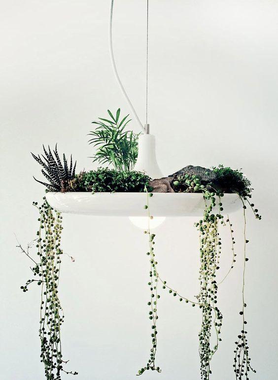Giardini sospesi per decorare casa