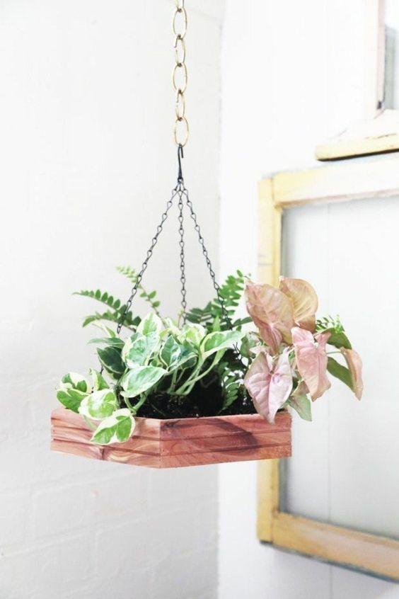 decorazioni originale piante 20