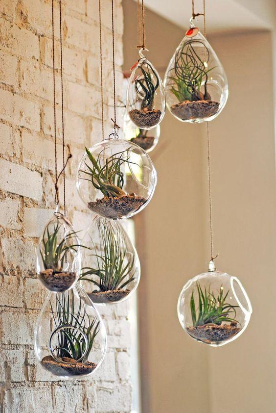 decorazioni originale piante 7