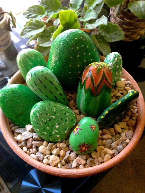 Sassi diventano bellissimi cactus