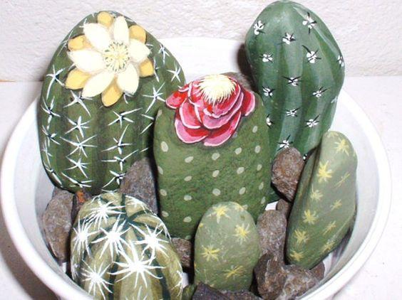 sassi cactus 17