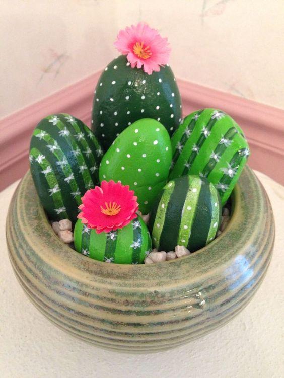sassi cactus 6