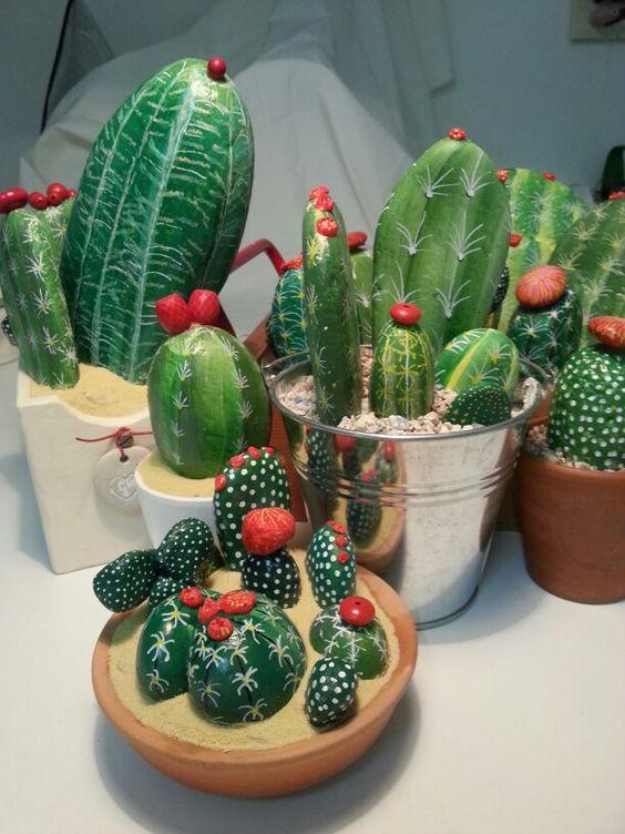 sassi cactus 9