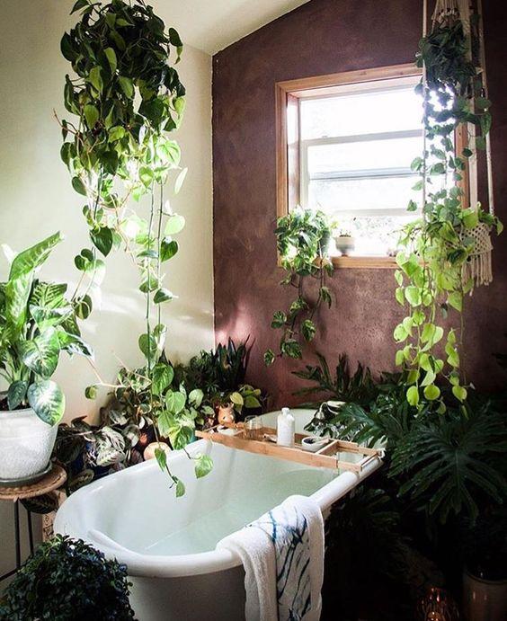 Decorare il bagno con le piante