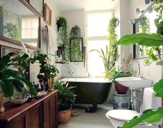Idee Decorazione Bagno : Decorare il bagno con le piante ecco idee da cui trarre