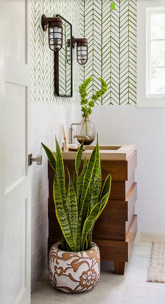 Decorare il bagno con le piante ecco 20 idee da cui trarre ispirazione - Piante da bagno ...