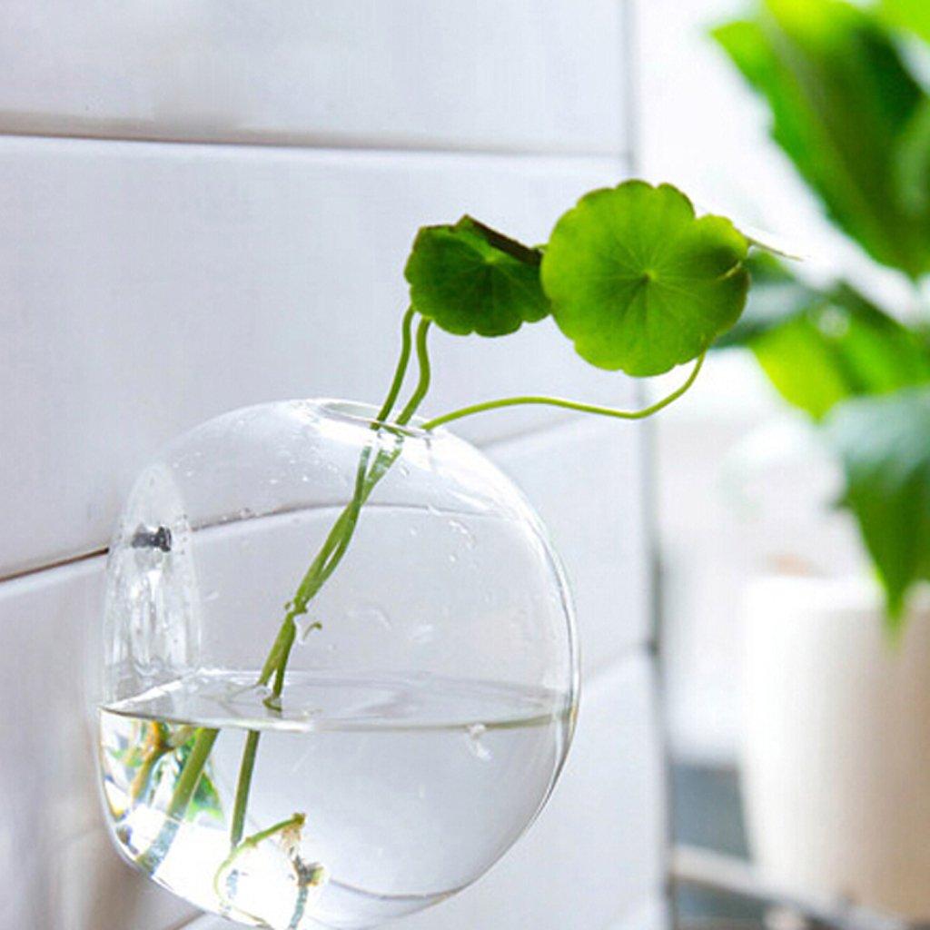 Vasetto trasparente da parete a forma di bolla.