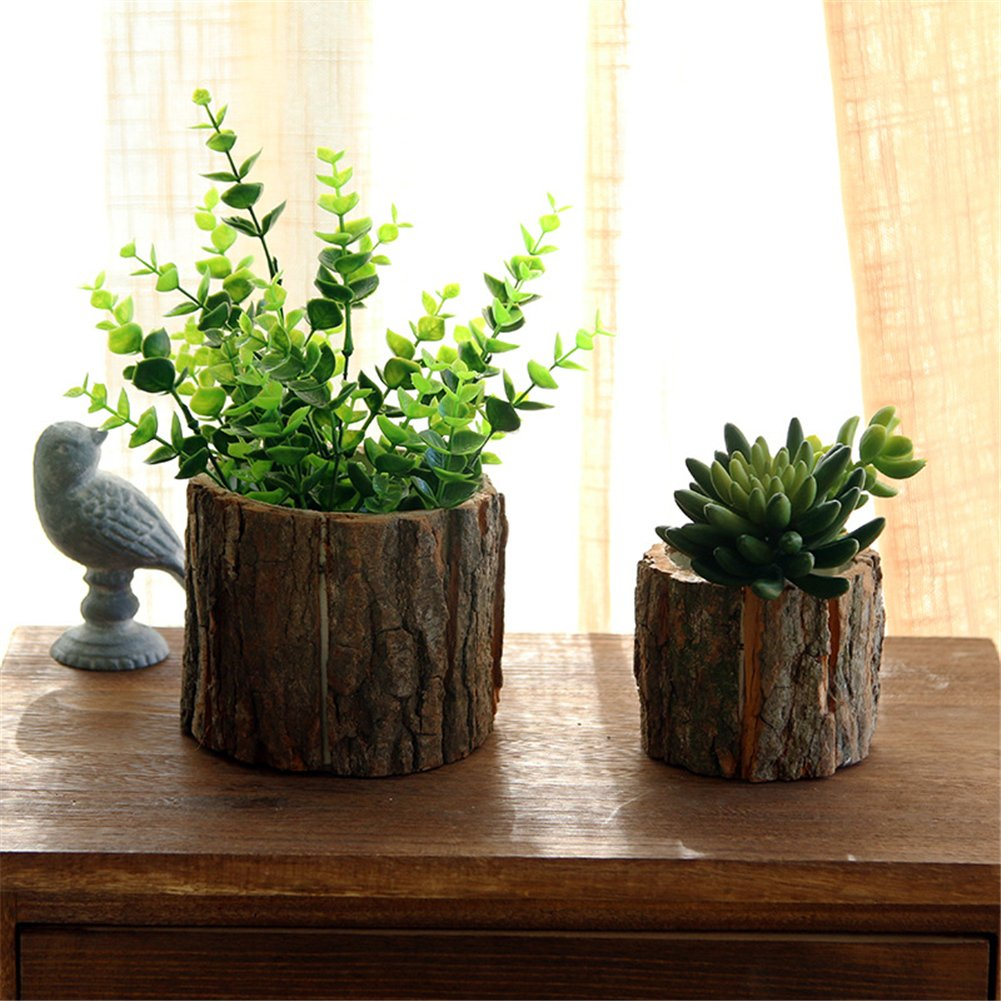 Vaso in vera corteccia con piante grasse.